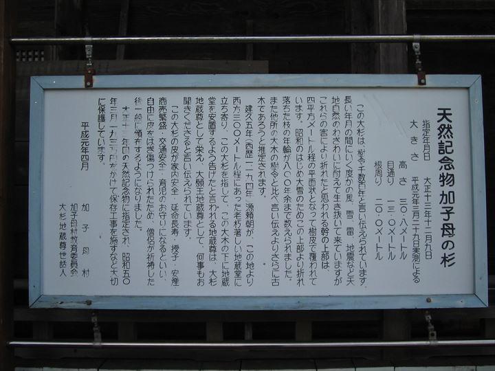 IMG_5522_R.JPG